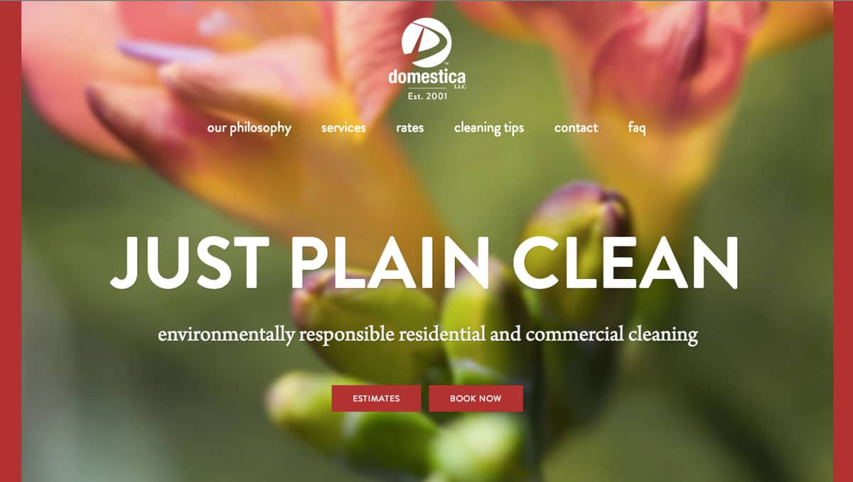 Domestica website redesign, home page